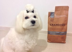 грандорф для собак отзывы