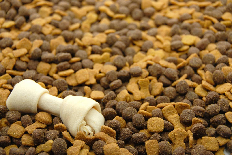 Производители кормов предупредили о кризисе на рынке из-за моратория на импорт