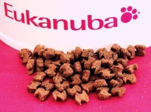 корм эукануба собачий