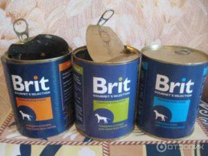 корм для собак консервированный brit