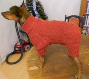 материалы для вязания одежды маленьким собакам