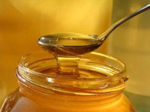 мед для черного терьера