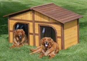 величина лаза в будке для собаки