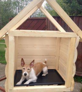 строительство деревянной будки для собаки