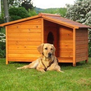особенности конструкции будок для собаки