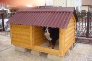 высота будки для собаки