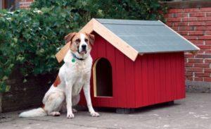 покраска будки для собаки