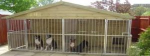 купить или построить вольер для собаки