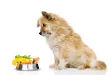 полезные витамины для собак 8 в 1
