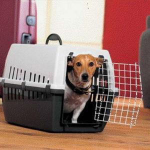пластиковый контейнер для путешествий для собак