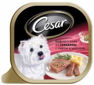 cesar консервы для собак
