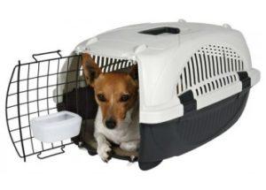 контейнеры переноски для собак