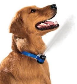 ошейники – «антилай» для собак