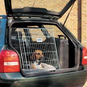 как приучить собаку к езде в клетке