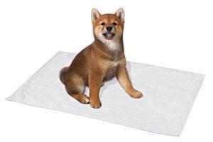 пеленки собачьи