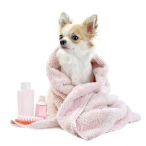 косметика для ухода собак