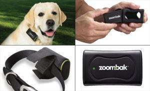 отслеживающий ошейник для собак с GPS- трекером